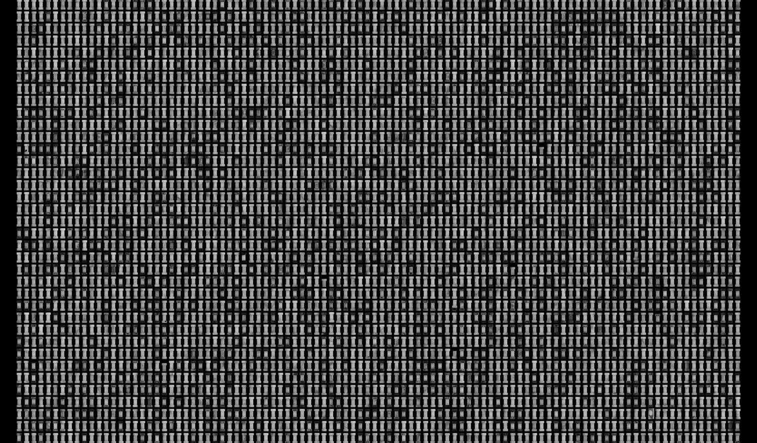 Society 032 193x145cm 145x110cm Pigment Inkjet  2017