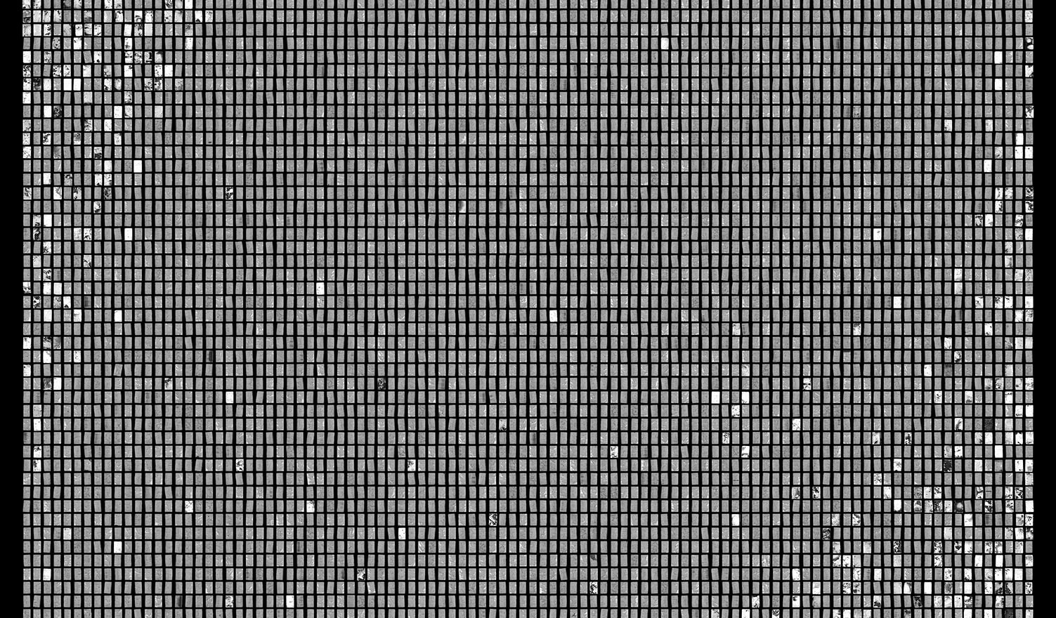 Society 026 193x145cm 145x110cm Pigment Inkjet  2017