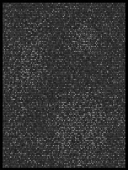 Society 035 193x145cm 145x110cm Pigment Inkjet  2017