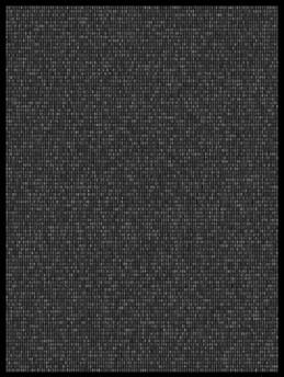 Society 037 193x145cm 145x110cm Pigment Inkjet  2017