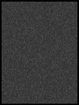 Society 010 193x145cm 145x110cm Pigment Inkjet  2017