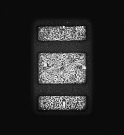 Individual-Sociable 106 145x110cm 110x85cm  Pigment Inkjet 2017