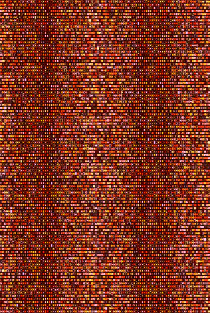 Metamorphosis 15-R-07, 193.9x130.3cm, 14