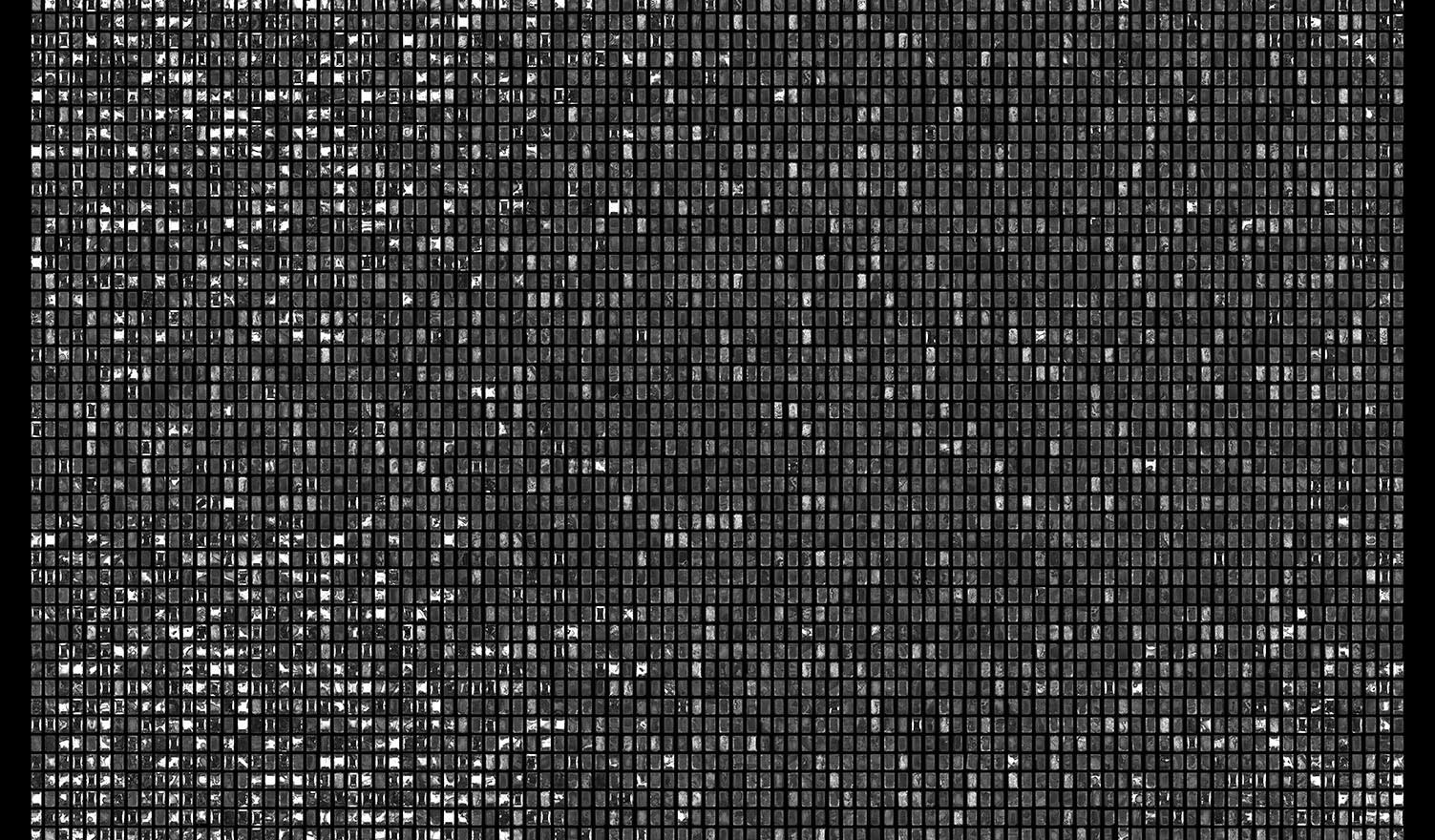 Society 023 193x145cm 145x110cm Pigment Inkjet  2017