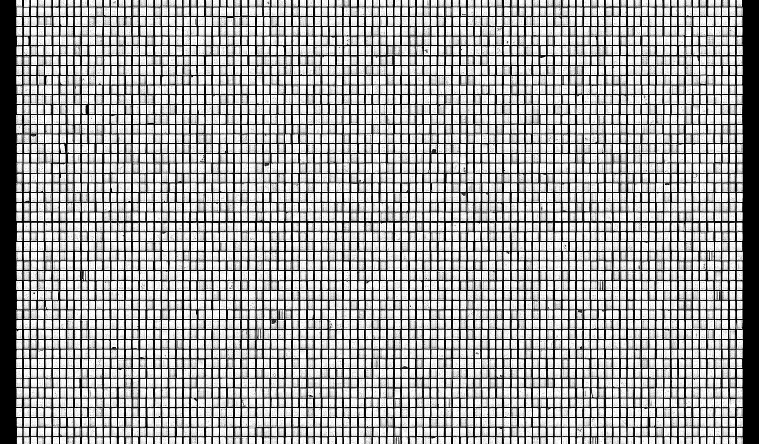 Society 015 193x145cm 145x110cm Pigment Inkjet  2017