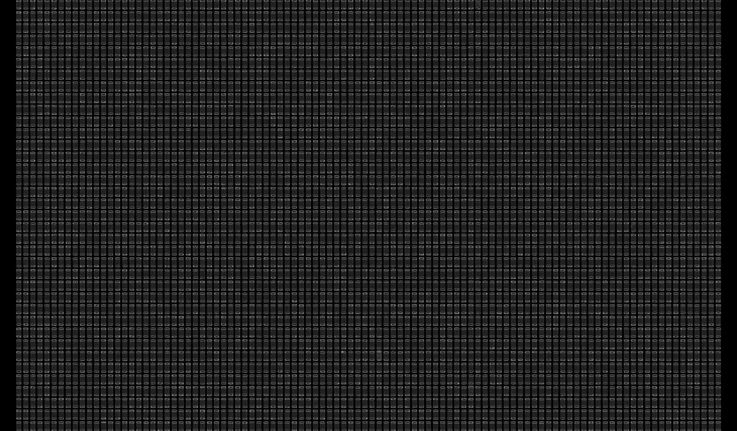 Society 038 193x145cm 145x110cm Pigment Inkjet  2017