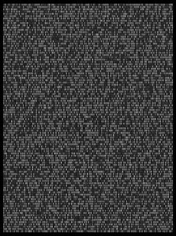 Society 036 193x145cm 145x110cm Pigment Inkjet  2017