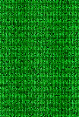 Metamorphosis 04-G-01, 193.9x130.3cm, 14