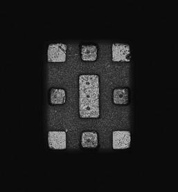 Individual-Sociable 105 145x110cm 110x85cm  Pigment Inkjet 2017