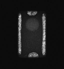 Individual-Curious  038 145x110cm 110x85cm  Pigment Inkjet 2017
