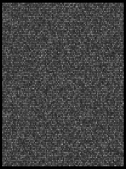 Society 022 193x145cm 145x110cm Pigment Inkjet  2017