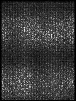 Society 034 193x145cm 145x110cm Pigment Inkjet  2017
