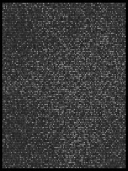 Society 033 193x145cm 145x110cm Pigment Inkjet  2017