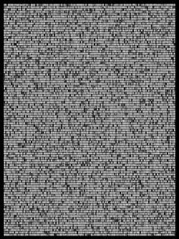 Society 013 193x145cm 145x110cm Pigment Inkjet  2017