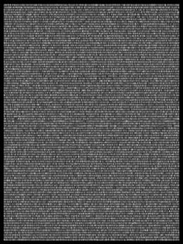 Society 012 193x145cm 145x110cm Pigment Inkjet  2017