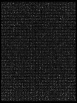 Society 024 193x145cm 145x110cm Pigment Inkjet  2017