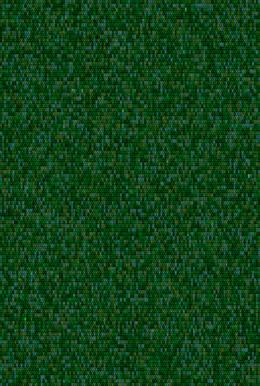 Metamorphosis 08-G-02, 193.9x130.3cm, 14