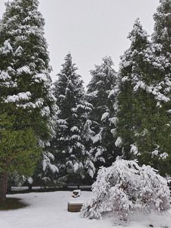 DUMC Church Grounds with snow