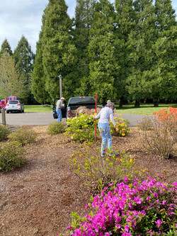 Janet Smith helping get the bark spread around the church grounds