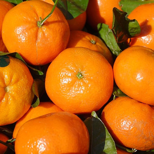17 - 24-28 Clementines