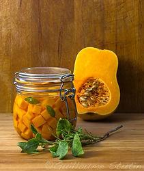Guillaume Stutin photo courge lactofermentation santé légumes fruits diététicienne nutritionniste villefranche figeac