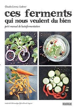Microbiote flore intestinale intestins immunité santé poids diététicienne  Figeac Villefranche de Rouergue nutritionniste Aveyron Lot ferments lactiques