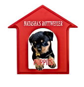 Natasha's%20Rottweiler%20Puppies_edited.