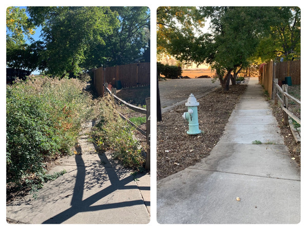 Before and After Area Restoration
