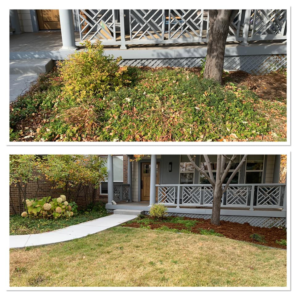 Before and After Garden Bed Rehab