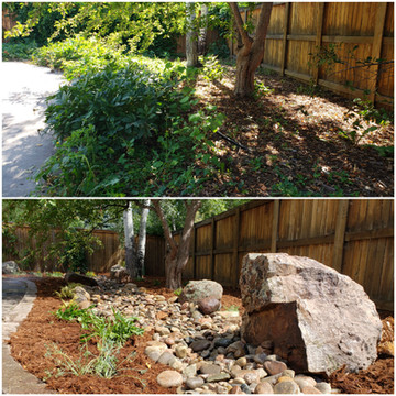 Before and After Landscape Install/Planting
