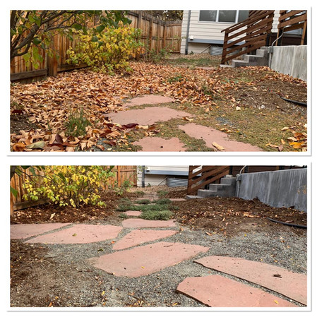 Before and After Fall Cleanup
