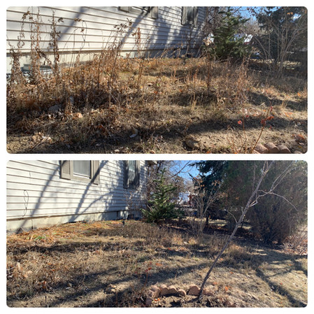 Before and After Garden Bed Cleanup