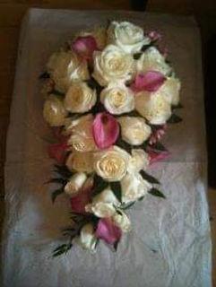 facebook_1576971456068.jpg
