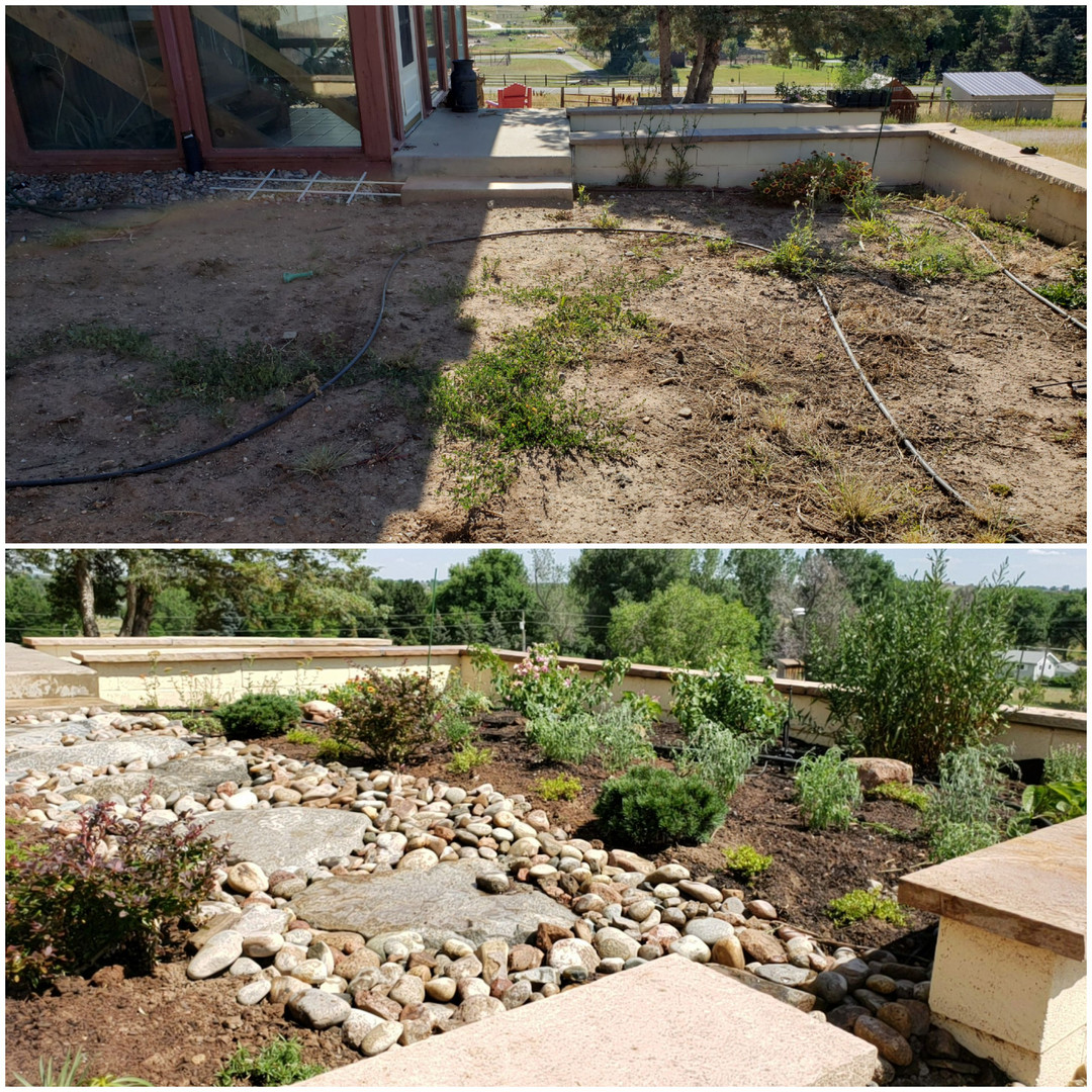 Before and After Landscape Design/Install