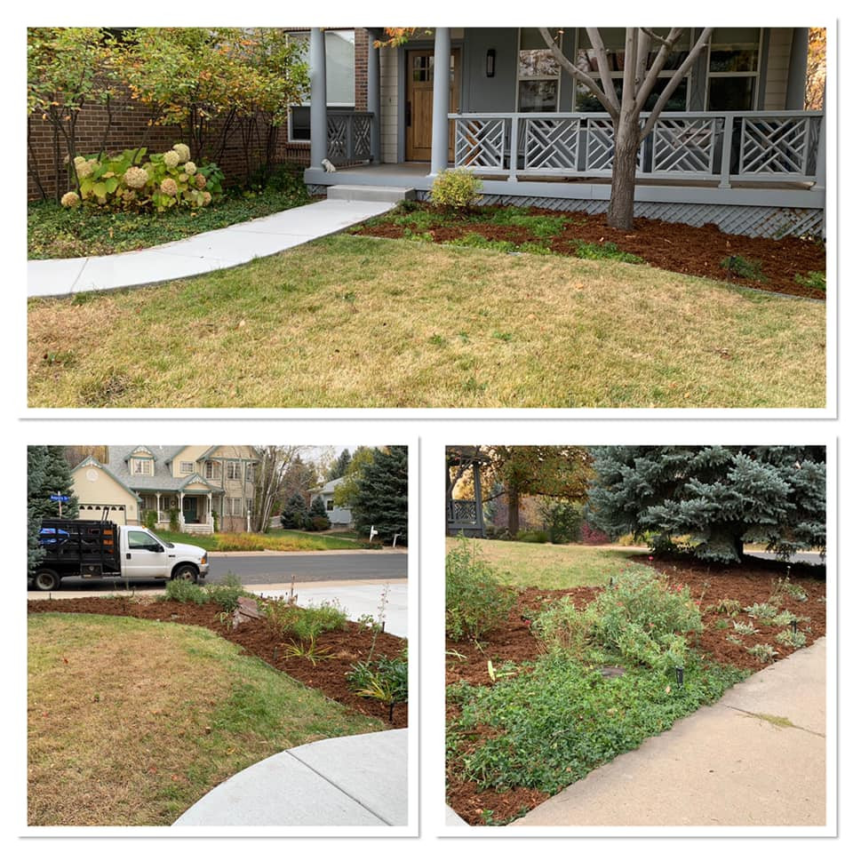 Final Pictures Garden Bed Maintenance