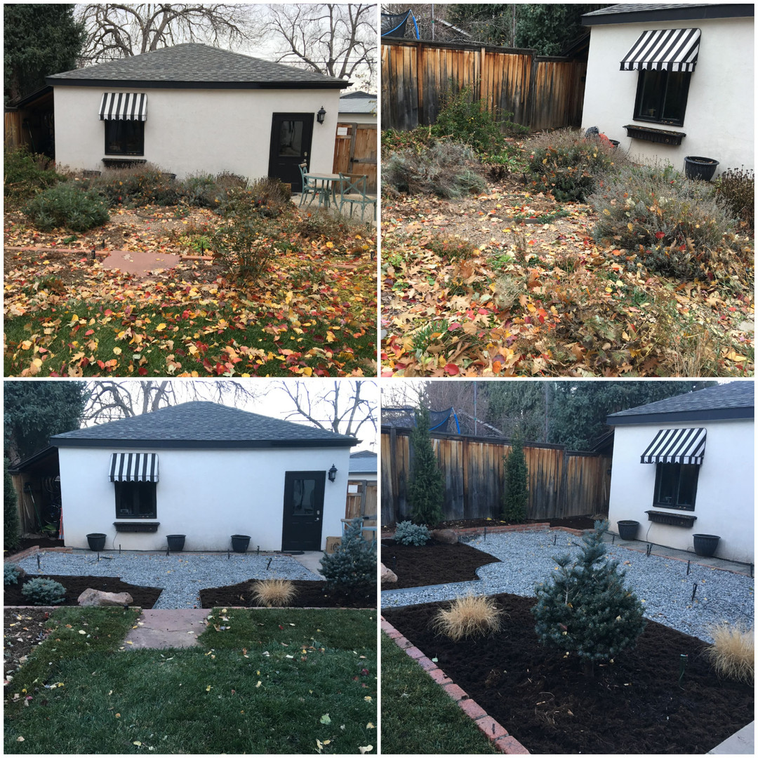 Before and After Landscape Install