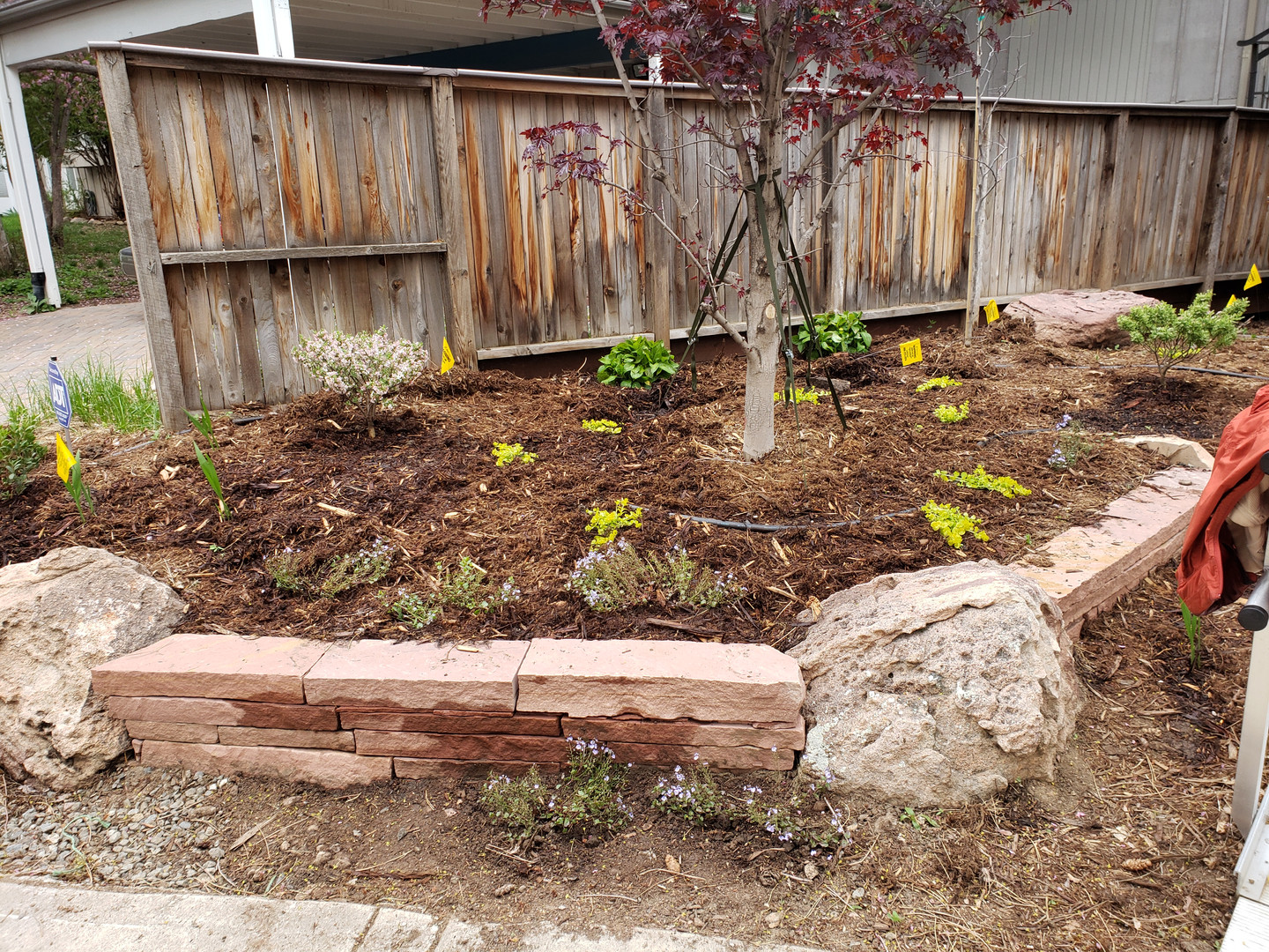 Final Picture Garden Bed Planting