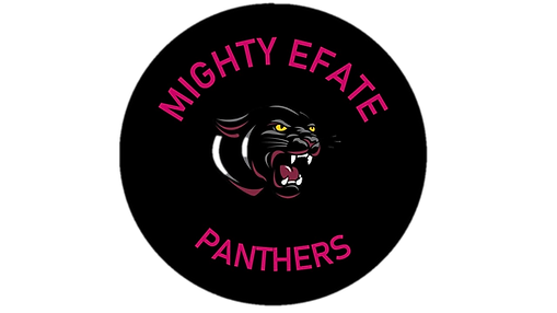 ME Panthers Logo.png