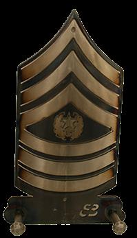 Sergeant Major Two Hook