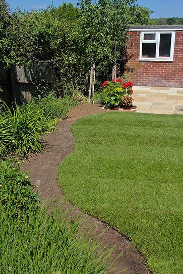 Grass - IMG_8607EESmall.jpg