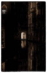 Noctune 6.JPG