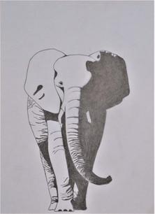 Schaduwende olifant