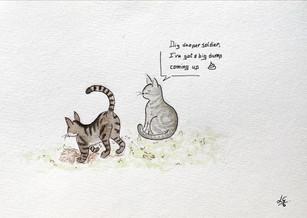 Kattenleger