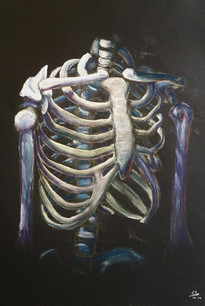 Warm skelet