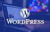 Looking-for-a-WordPress-Developer-1042x6