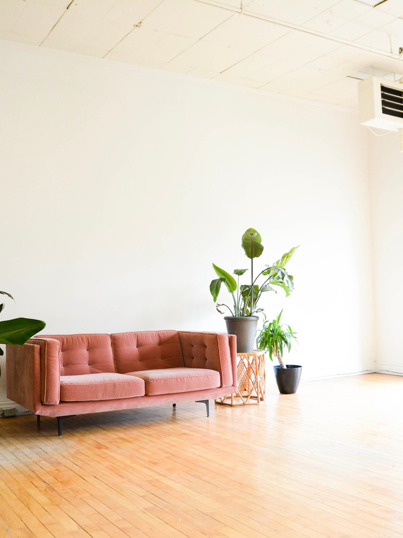 The pink couch