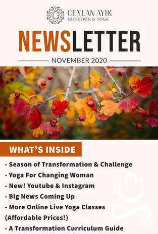 November Newsletter!