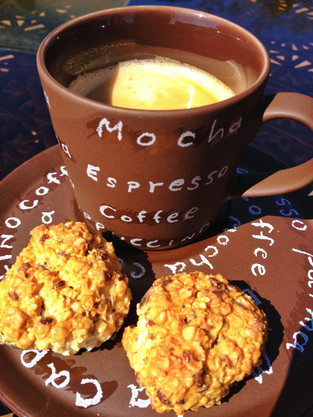 Oat Cookies from a picnic in the park!