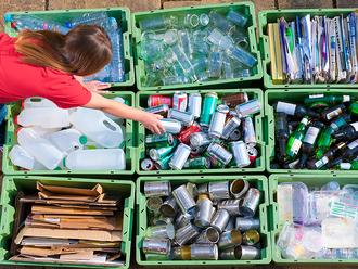 Названы регионы-лидеры по раздельному сбору мусора
