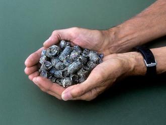 Цементным заводам предложили господдержку за переход на топливо из мусора